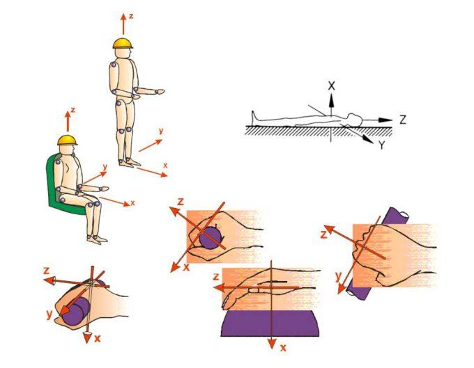 Koordinatensystem-für-Ganzkörper--Vibrationen-und-Hand-Arm--Vibrationen-bei-der-Vibrationsmessung